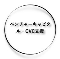ベンチャーキャピタル・CVC支援